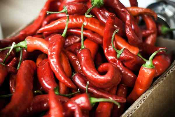Capsaicin Health Benefits - Health Benefits of Hot and Spicy Foods