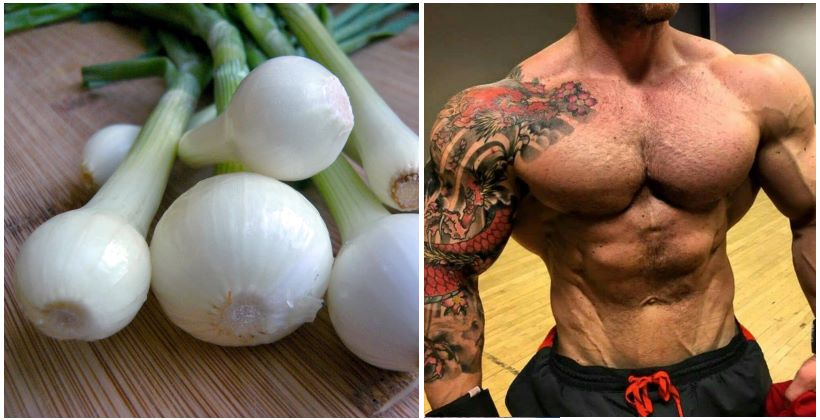 Onions Can Significantly Increase Testosterone Levels - Fitness and Power