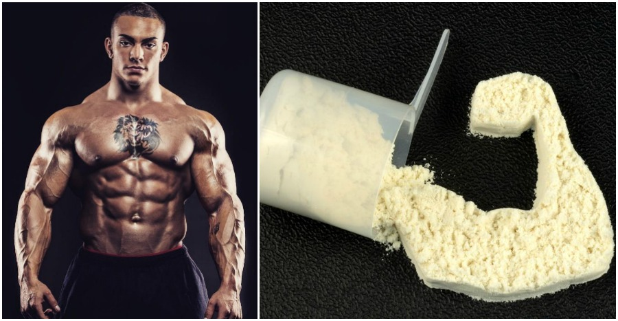 Why Casein is a Great Protein Source - Fitness and Power