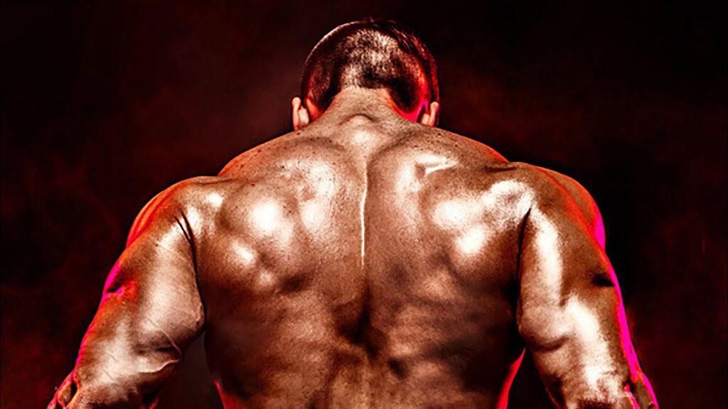 Best Gym Trap Music mix 2021 🔥 Workout Motivation Music Mix 2021 🔥 1 Hour Epic Workout Music 2021 #7