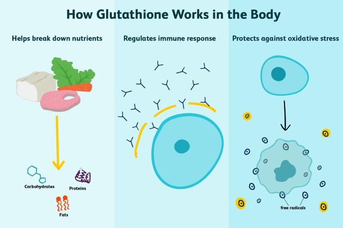 How to Increase Cellular Glutathione Levels - Fitness and Power