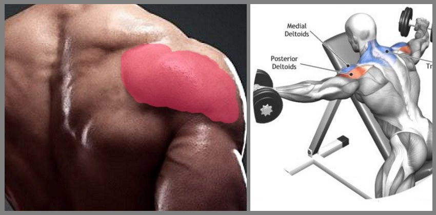 Don't Forget Your Rear Delts - Dumbbell Lying Rear Lateral Raise